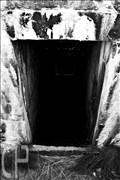 bunker-dk-52